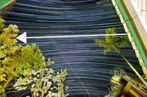 celestialequator