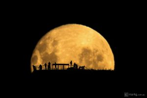 Mark Gee moon silhouettes
