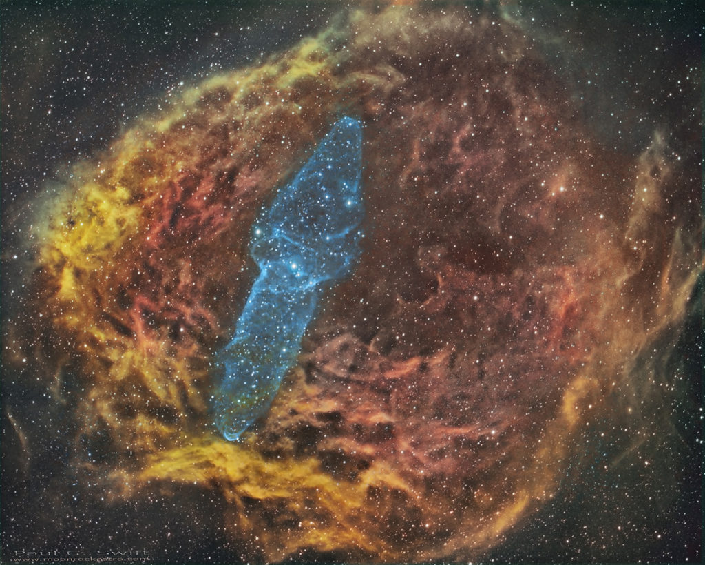 Paul C Swift Squid nebula